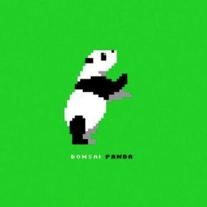 Bonsai Panda